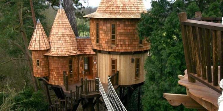 Ilustrasi atap rumah pohon, Sumber : properti.kompas.com