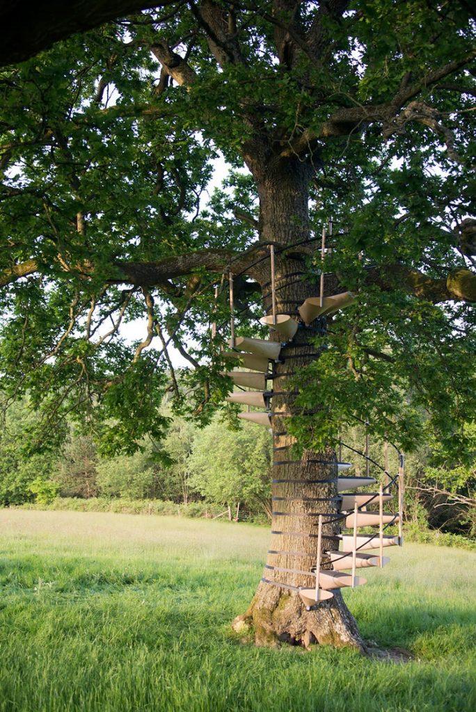 Ilustrasi tangga akses masuk ke rumah pohon, Sumber : fimela.com