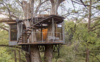 Intip : Tips Membuat Rumah Pohon
